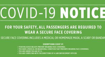 pandemic masks